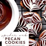 spiderweb.cookies.wiw .pinterest