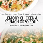 lemony chicken and spinach orzo soup whisk in wellness pinterest