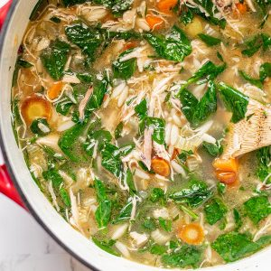 lemony chicken and spinach orzo soup2